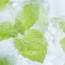 E-Liquide MENTHE ARCTIQUE  (Alfaliquid)