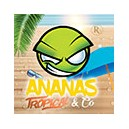 ANANAS TROPICAL AND CO - Arome concentré (REVOLUTE)